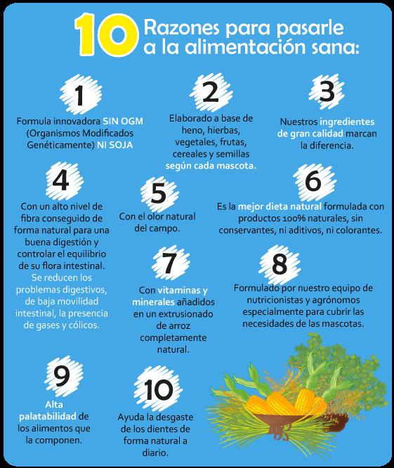 10-RAZONES-PARA-ALIMENTACION-SANA
