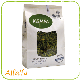 alfalfa-seleccionada