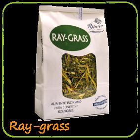 ray-grass
