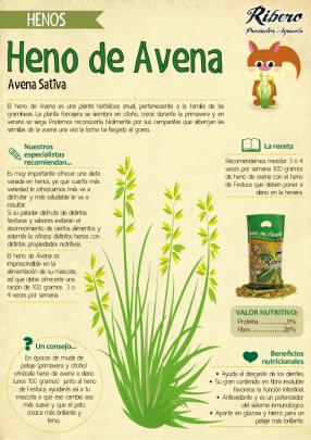 Heno-de-Avena-Ribero